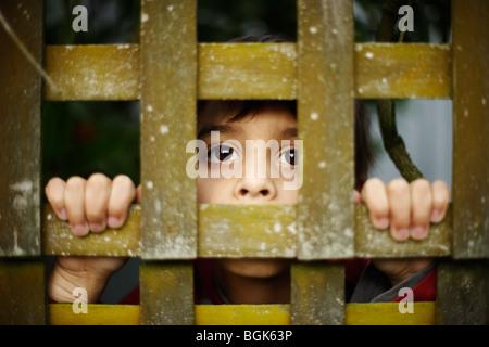 Boy aged seven years hides behind trellis - Stock Photo