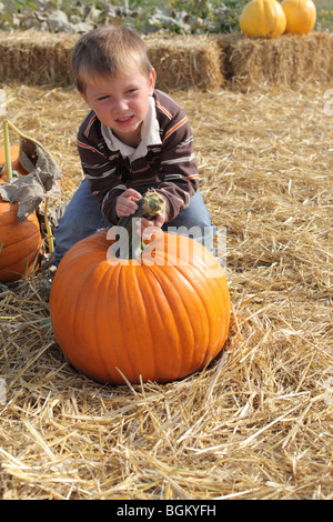 Young boy picking up pumpkin at pumpkin patch - Stockfoto