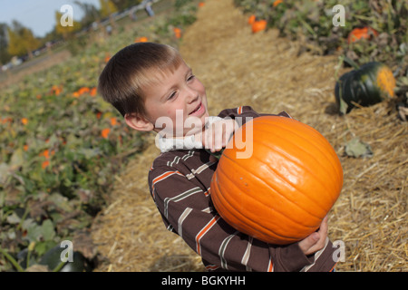 Young boy holding up pumpkin at pumpkin patch - Stockfoto