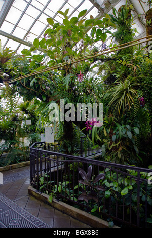 The CONSERVATORY OF FLOWERS is a botanical greenhouse located in GOLDEN GATE PARK - SAN FRANCISCO, CALIFORNIA - Stock Photo