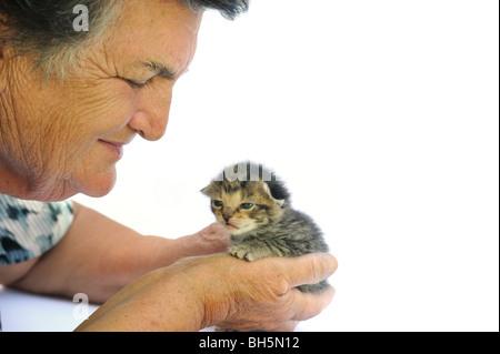 Senior woman holding kitten - white background - Stock Photo