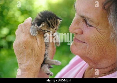 Senior woman holding kitten - outdoor - Stock Photo