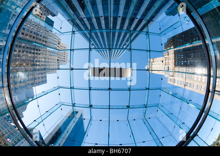 USA, New York City, Manhattan, skyscrapers of Fifth Avenue viewed from below through a glass roofed ceiling - Stock Photo