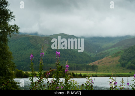 View across Ennerdale Water with low clouds hanging over the hills. - Stock Photo