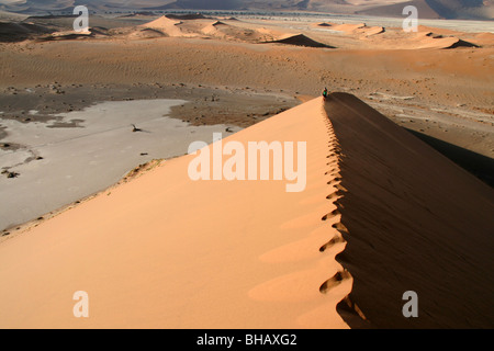 Hiking along the pristine ridge of a huge red sand dune in the Namibia desert - Stockfoto