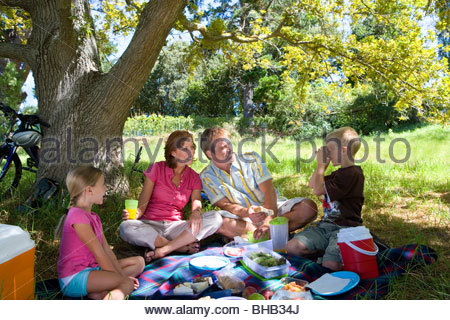 Family of four having picnic, boy (8-10) taking photograph of parents - Stock Photo