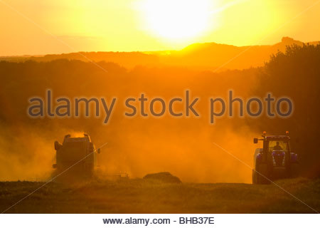Sun over tractor and combine harvesting wheat in rural field - Stock Photo