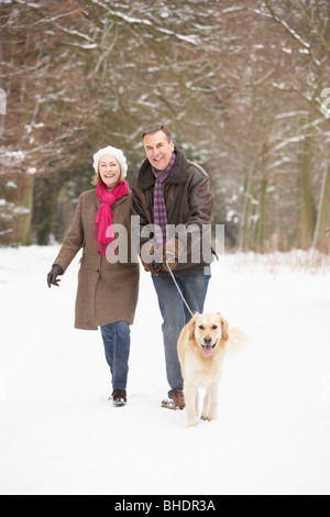 Senior Couple Walking Dog Through Snowy Woodland - Stock Photo