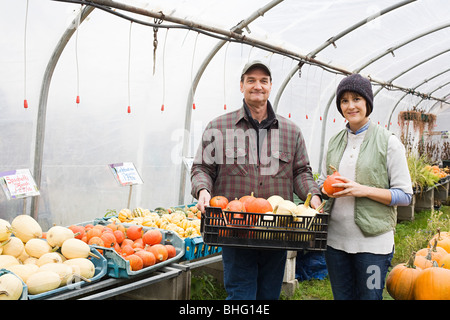 Farmers in greenhouse with pumpkins stock photo royalty for Bhg greenhouse