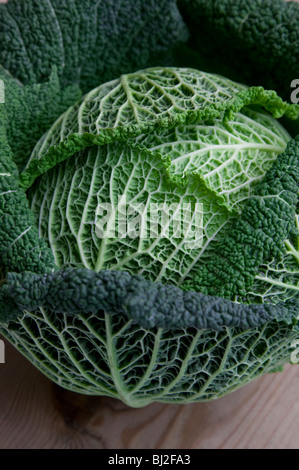 CLOSE UP OF SAVOY CABBAGE - Stock Photo