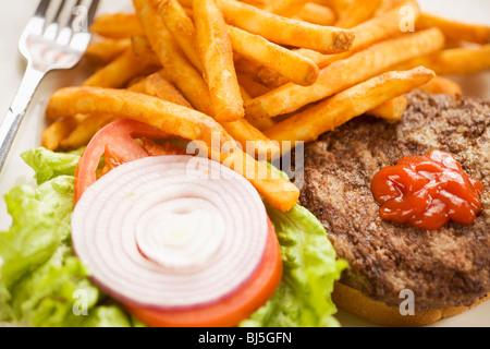 Kobe beef burger and french fries, Taproom at Firestone Walker Brewing Company, Buellton, Santa Ynez Valley, California - Stock Photo