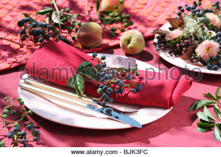 Place-setting decorated with Boston ivy - Stock Photo