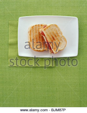 Grilled Ham and Cheese Sandwich; Halved on Plate - Stockfoto