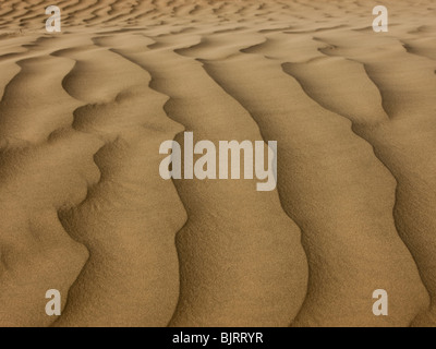 USA, Utah, Little Sahara, sand dunes, full frame - Stock Photo