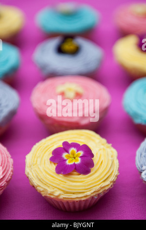 Colourful cupcakes and edible spring flowers - Stock Photo