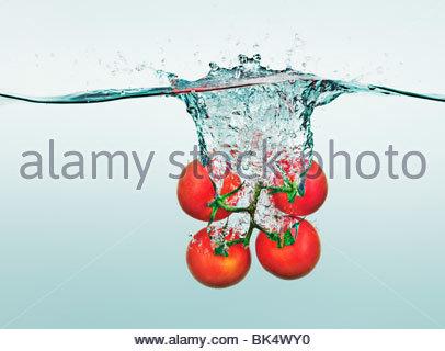 Tomatoes on vine splashing in water - Stock Photo