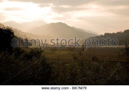 The sun rises over the Vaca mountain range and illuminates the Napa Valley floor - Stockfoto