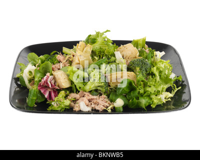 Tuna Salad with Artichoke Hearts - Stock Photo
