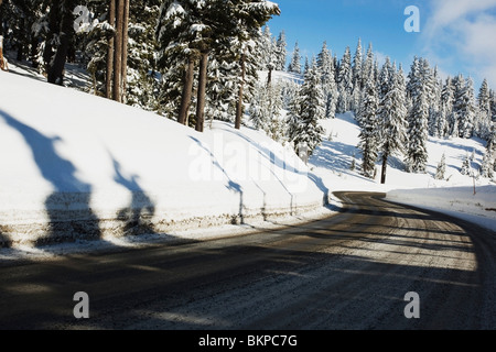 Oregon Cascades, Oregon, United States Of America; A Road And Fresh Winter Snow On Mount Hood - Stock Photo