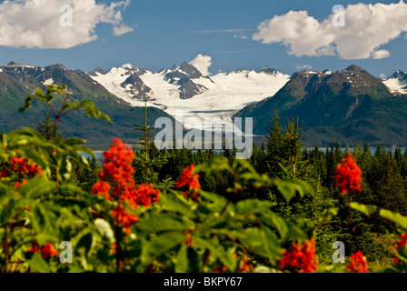 Summer scenic of Grewingk Glacier and the Kenai Mountains of Kachemak Bay State Park in Southcentral Alaska - Stock Photo