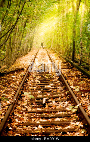 Old Rail line unused since the 80s in Berlin running through woods with a figure in the distance - Stock Photo