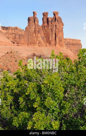 Courthouse Towers - The Three Gossips, Sunrise - Arches National Park, Moab, Utah, USA - Stock Photo