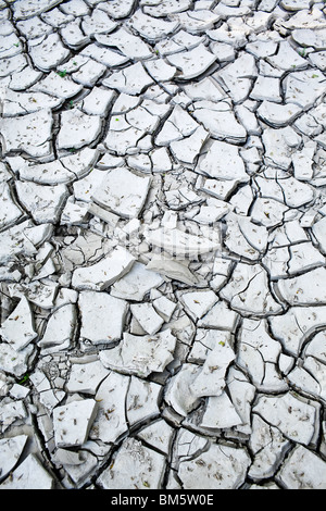Cracked clay mud due to a recent drought. - Stock Photo