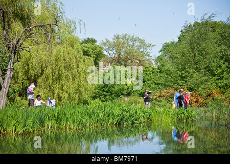 Families exploring the nature pond in Queen's Park in the Southside of Glasgow, Scotland. - Stock Photo