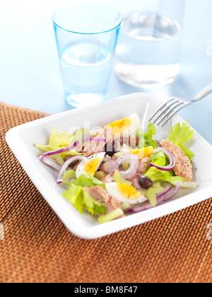 plate of tuna salad ,onion - Stock Photo