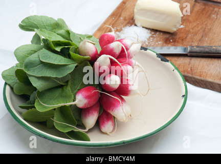 Fresh Radishes In An Enamel Dish, With Butter, Salt and A Knife In The Background - Stock Photo