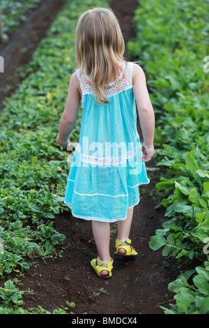 Young girl in dress walking through crop field - Stock Photo
