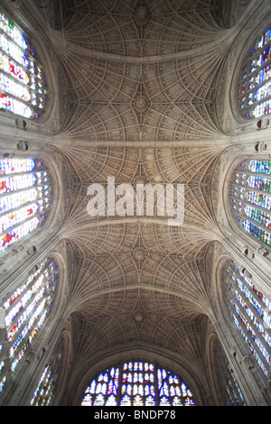 Interiors of a chapel, King's College Chapel, King's College, Cambridge University, Cambridge, Cambridgeshire, England - Stock Photo
