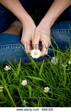 Close-up of a woman holding a daisy - Stock Photo