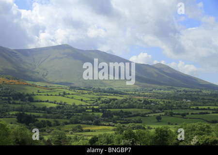 The Glen of Aherlow and Galtee Mountains, Co Limerick, Republic of Ireland. - Stock Photo