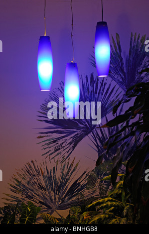 Caribbean Port Antonio Jamaica Mockingbird Hill Hotel North Coast Evening Lamps Lamp Modern Blue Tropics Tropical - Stock Photo