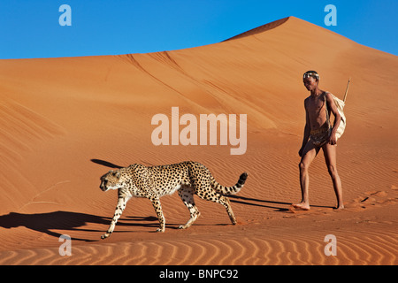 San hunter armed with traditional bow and arrow with cheetah - Stock Photo