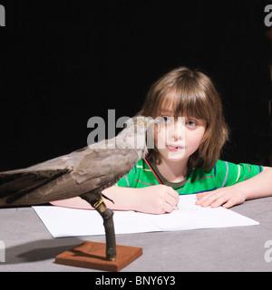 Boy drawing a bird - Stock Photo