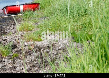 BOAT MOORED IN DENMARK - Stock Photo