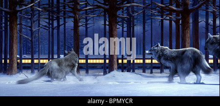 WOLVES WATCH TRAIN PASS BY THE POLAR EXPRESS (2004) - Stock Photo