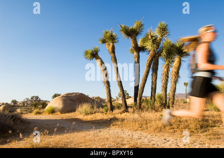 joshua tree national park single women Joshua tree national park is open year-round there are few facilities within the  park's approximately 800,000 acres, making joshua tree a.