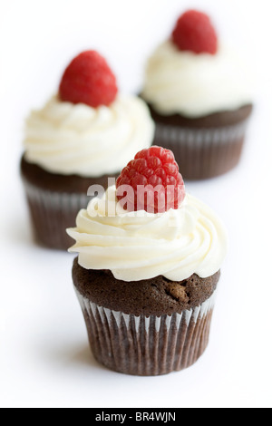 Raspberry and Chocolate cupcakes - Stock Photo