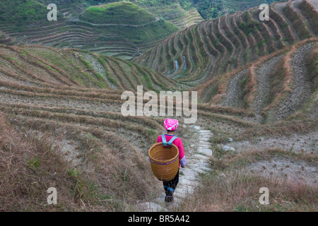 Zhuang girl carrying basket in the mountain, Longsheng, Guangxi, China - Stock Photo
