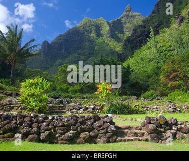 Kauai Hi Rock Terraces In The Limahuli Garden National Tropical Stock Photo Royalty Free
