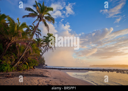 Kauai, HI Sunrise clouds and overhanging palm trees on Hanalei Bay near Makahoa point - Stock Photo