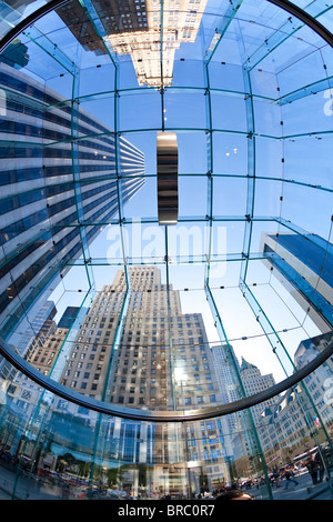 Skyscrapers of Fifth Avenue viewed from below through a glass roofed ceiling, Manhattan, New York City, New York, - Stock Photo