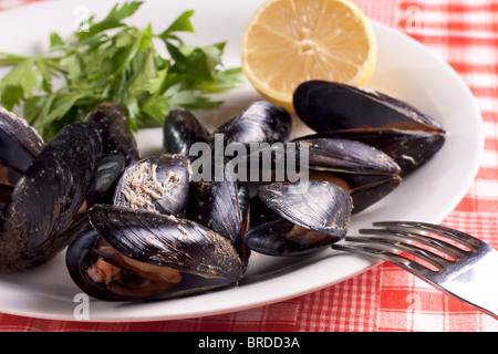 Mussels with Lemon and Parsley - Stock Photo