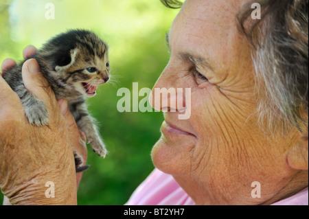 Senior woman holding kitten – outdoor - Stock Photo