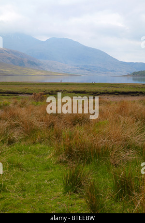 Looking south west to Loch Etive from Gualachulain. Argyll and Bute, Scotland - Stock Photo