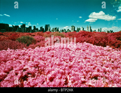 Color infrared view of Central Park and midtown from the roof of the Metropolitan museum in New York City. © Craig - Stock Photo