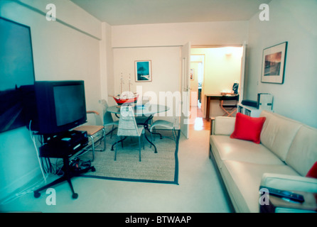 Paris, France, Interior Living Room in Modern Apartment,  (After Renovation Work). - Stock Photo